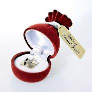 lapel-pin-gift
